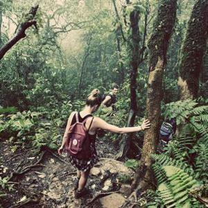 jungletrek-travelpharm-blog-featured