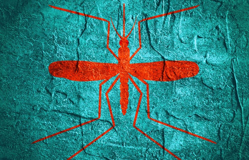 Mosquito banner design
