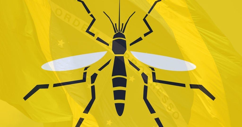 Mosquito design on Brazilian flag