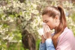 woman sneezing due to hay fever